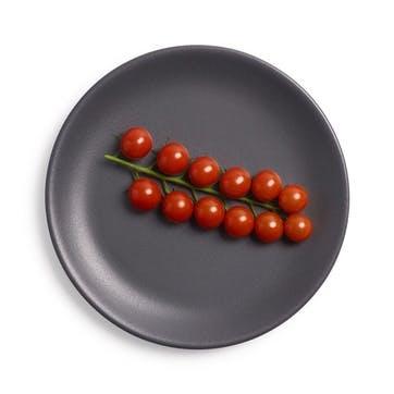 Dinner Plate, Slate