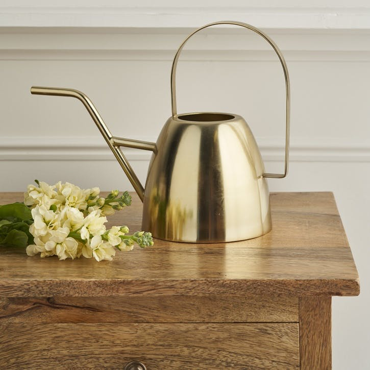 Brushed Brass Watering Can