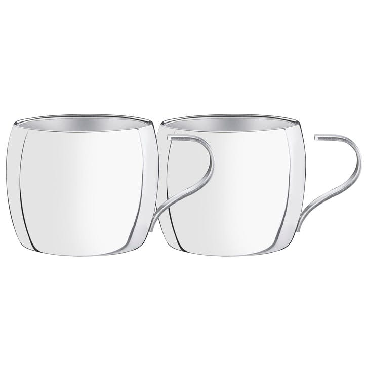Stainless Steel Cappuccino Set, 2 Pieces
