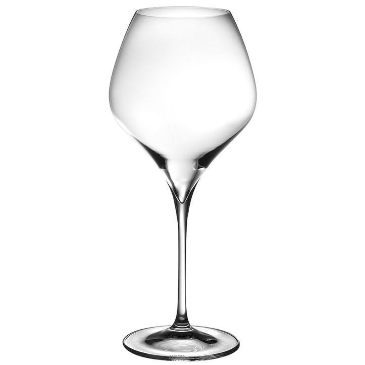 Vitis Pinot Noir/Nebbiolo Glass, Set Of 2
