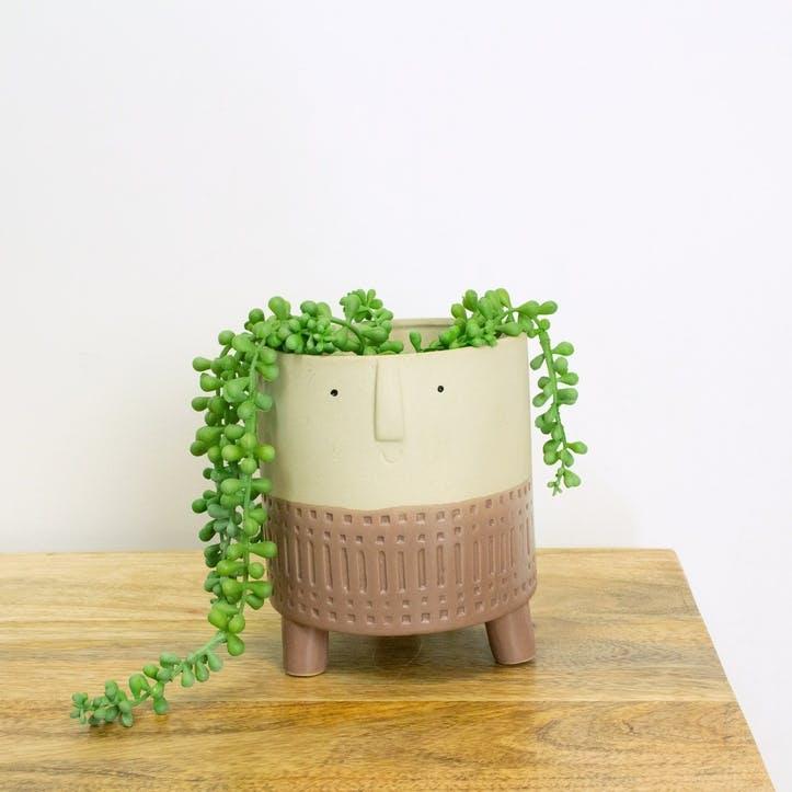 Happy Face Plant Pot, Terracotta