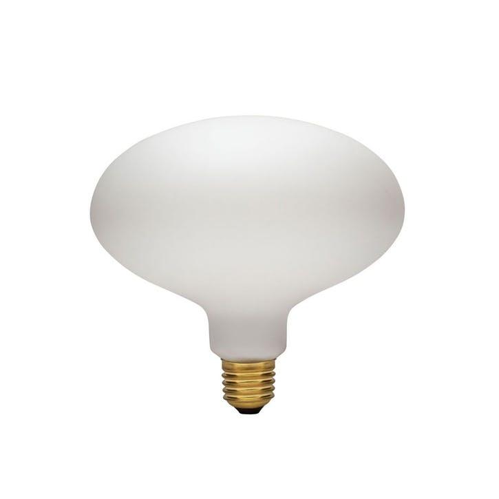 Oval 6W LED Shaped bulb H16 x W16.4 x L16.4 Clear