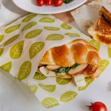 Vegan Wax Sandwich Bag, Set of 2