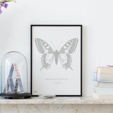 British Butterflies 'Swallowtail' Screen Print, A4, Putty Grey