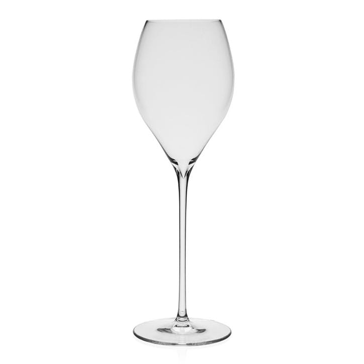 Starr Champagne Glasses, Set of 4