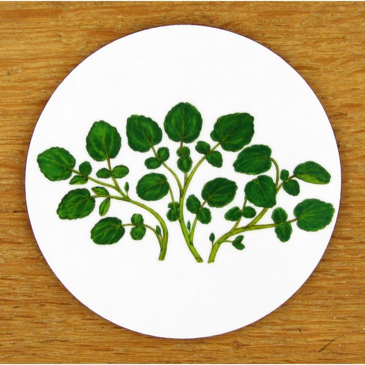 Watercress Coaster - 10cm