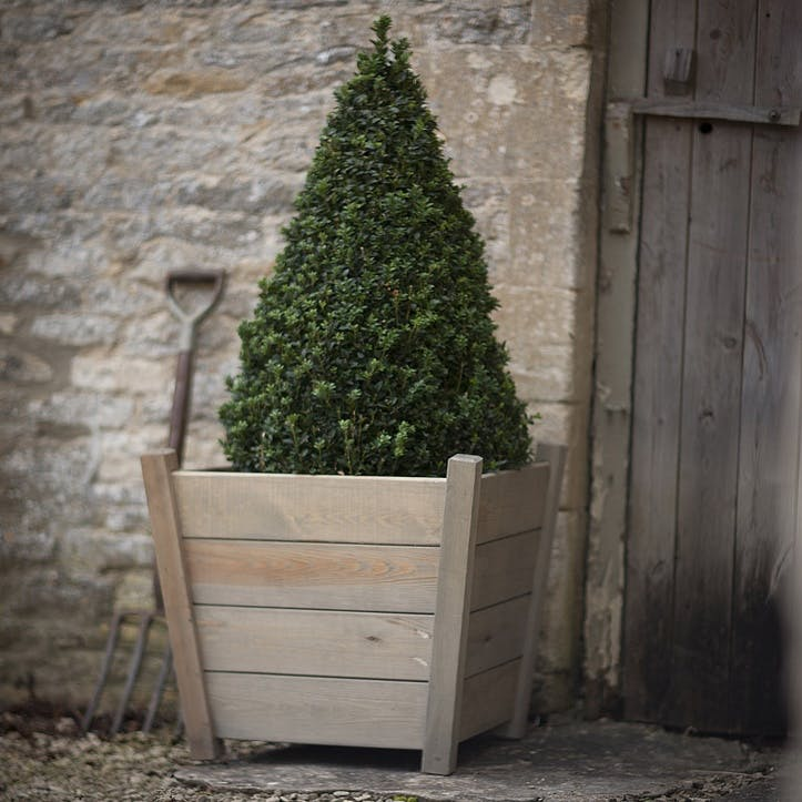 Kingham Planter, Large,  Spruce
