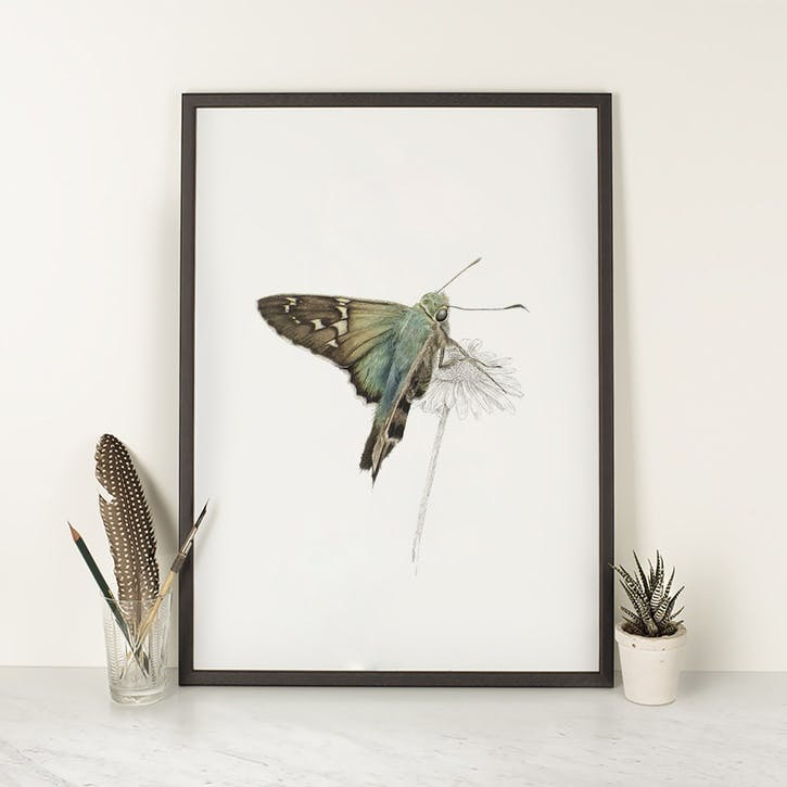 Long Tailed Skipper - A4