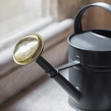 Steel and Brass 5L Watering Can