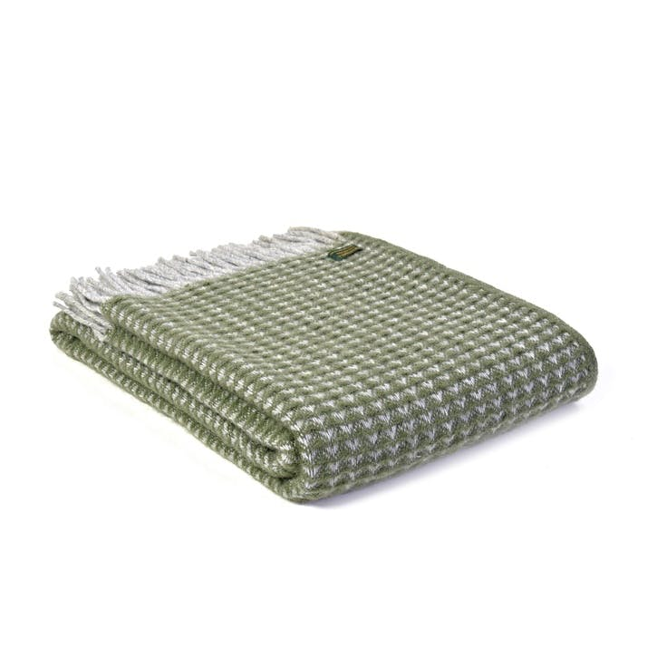 Treetop Throw, Olive