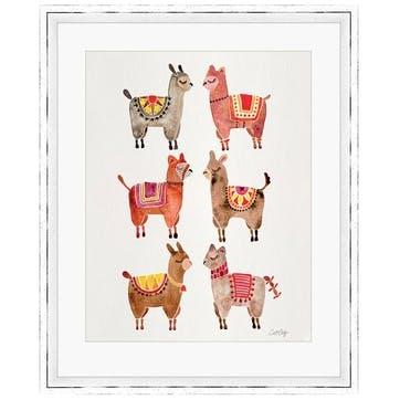 Cat Coquillette Alpacas Framed Print, 55 x 45cm
