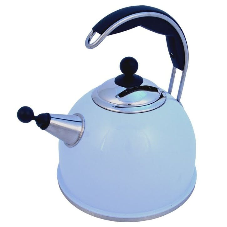 Stainless Steel Whistling Kettle, Duck Egg Blue