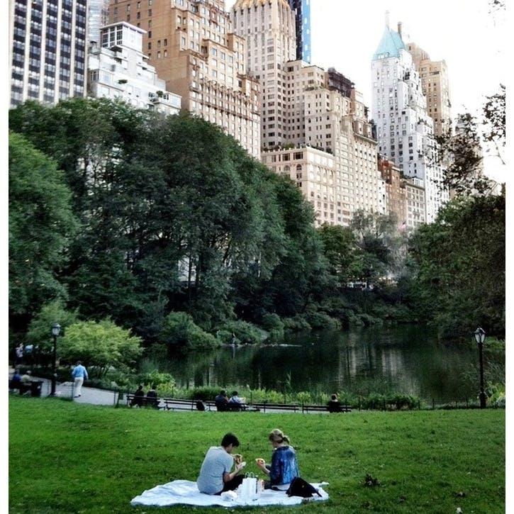 Picnic In Central Park