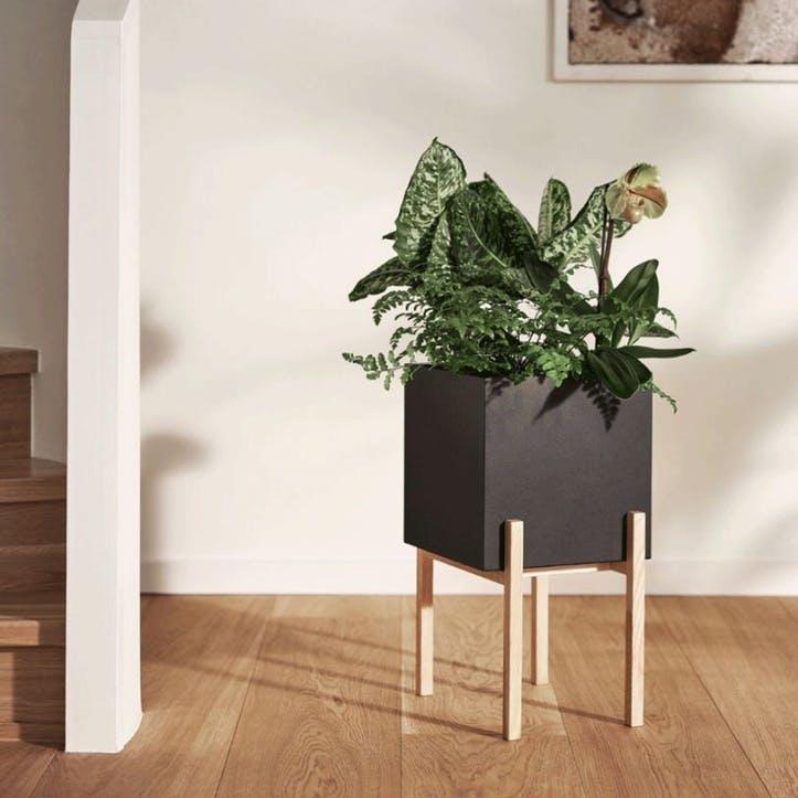 Botanical, High Planter, Black