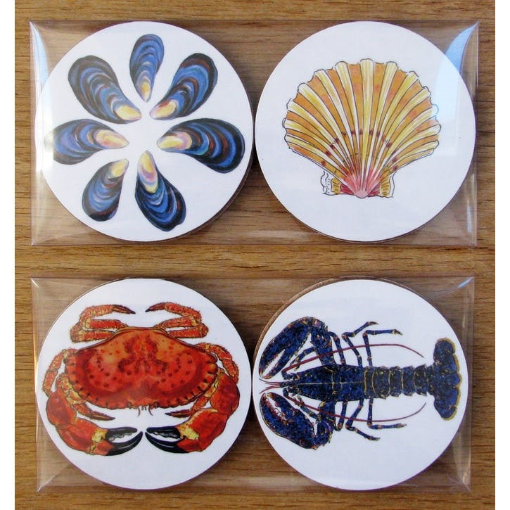 Shellfish Coaster Gift Pack
