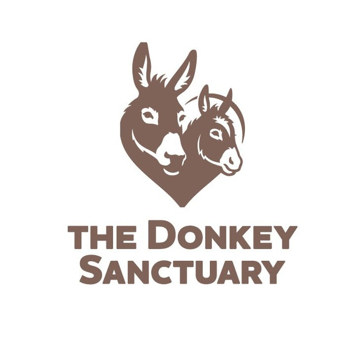 A Donation Towards The Donkey Sanctuary