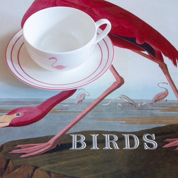 Flamingo Breakfast Cup & Saucer