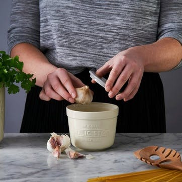 Innovative Kitchen Garlic Store and Grater