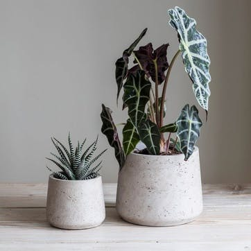 Stratton, Set of 2 Plant Pots