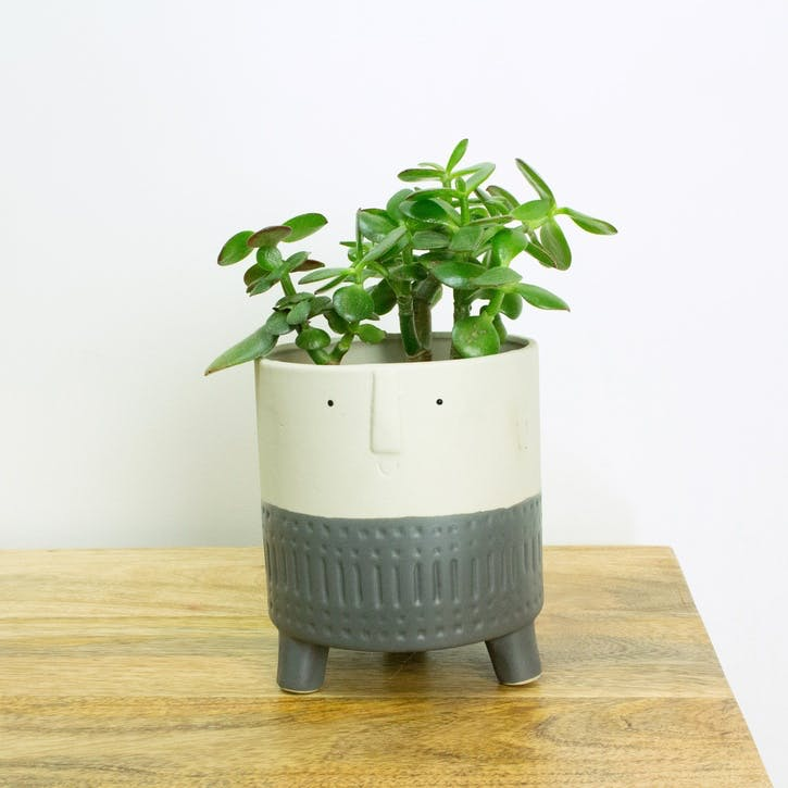 Happy Face Plant Pot, Grey