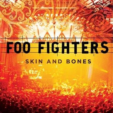 """Foo Fighters, Skin And Bones 12"""" Vinyl"""