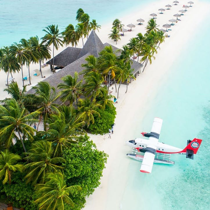 Contribution to our Honeymoon Flights £100
