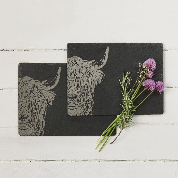 Highland Cow Place Mat, Set of 2