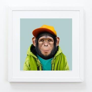 Zoo Portrait Print Chimpanzee, 33cm x 33cm