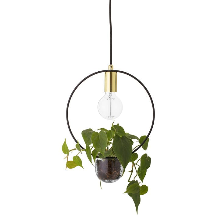 Pendant Planter Ceiling Lamp