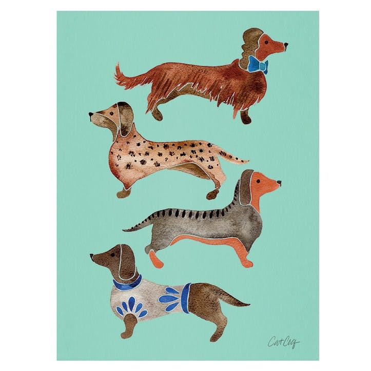 Cat Coquillette Dachshunds Canvas, 30 x 40cm