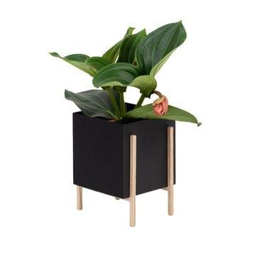 Botanical, Standing Planter, Black