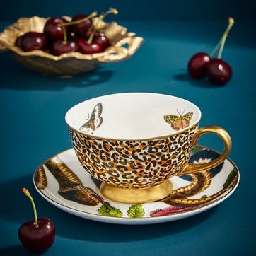 Tea Cup & Saucer Coupe, Leopard