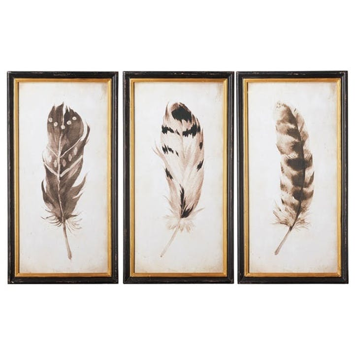 Pluma Framed Prints, Set of 3