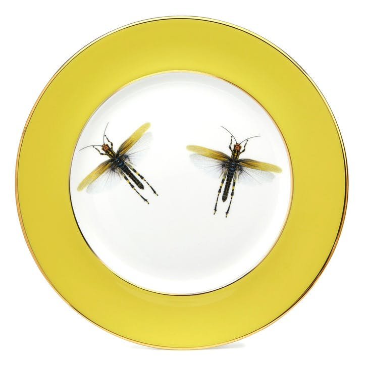 Urban Nature Dragonflies Dinner Plate, Yellow