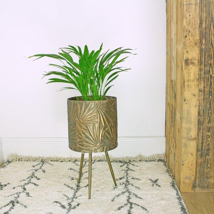Brass Palm Standing Planter, Small
