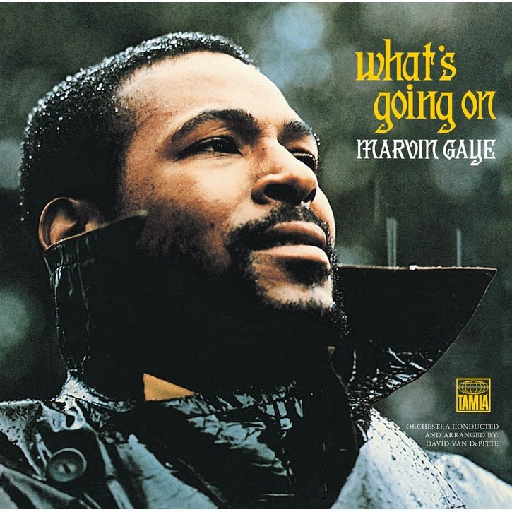"Marvin Gaye, What's Going On 12"" Vinyl"
