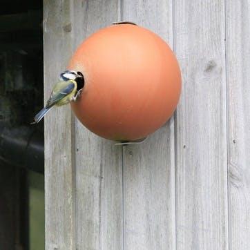 Birdball Wall-Mounted Birdhouse; Terracotta