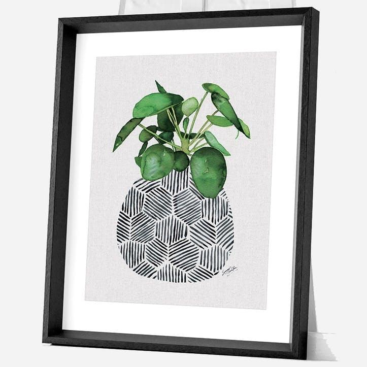 Summer Thornton Chinese Money Plant Framed Print, 55 x 45cm