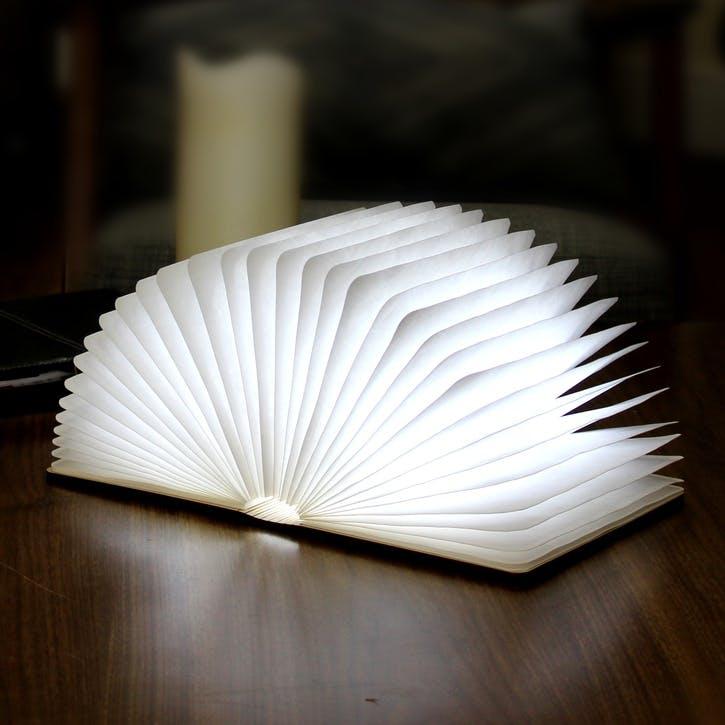 LED Smart Book Light, White Maple Wood