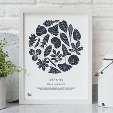 Leaf Types Screen Print - 30 x 40cm; Sheer Slate