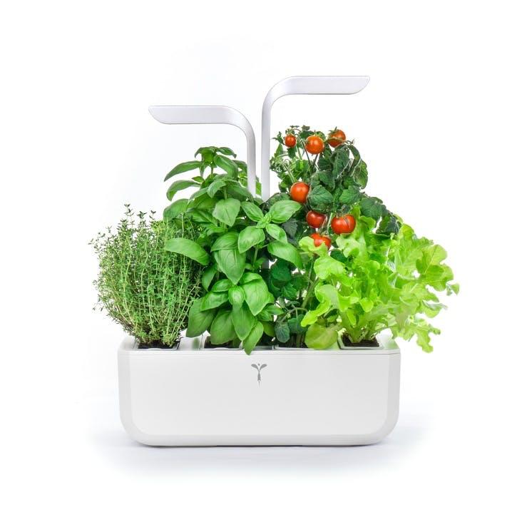 Smart Indoor Garden, Arctic White