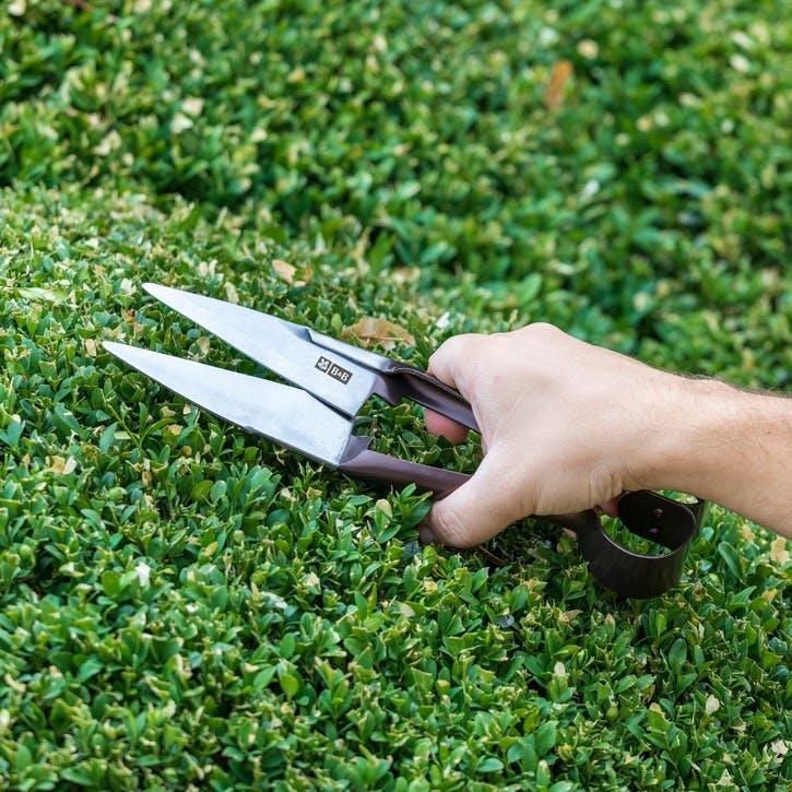 National Trust Topiary Sheer