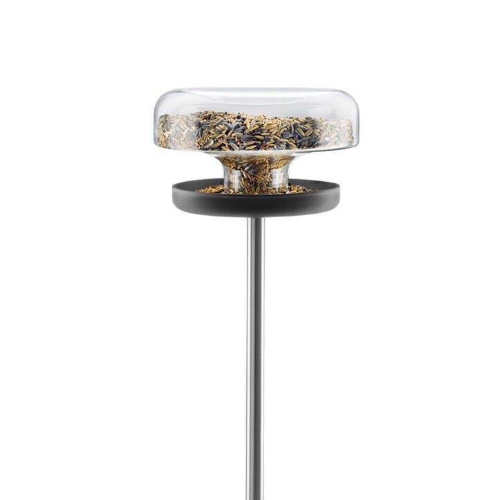Bird Table, Clear