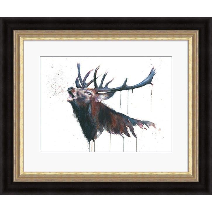 Sarah Stokes Roar Framed Print, 56 x 66cm