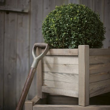 40cm Planter, Spruce