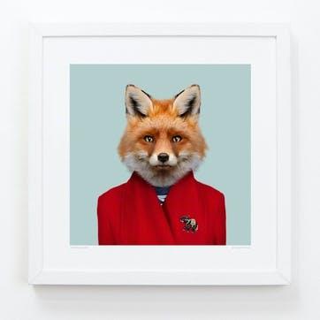 Zoo Portrait Red Fox, 33cm x 33cm
