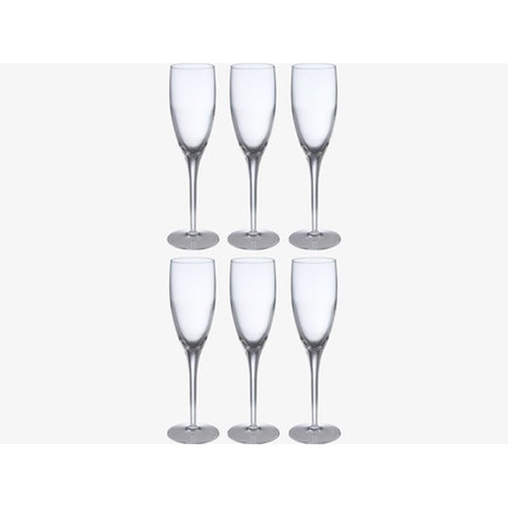 Michelangelo Champagne Glass, Set of 6