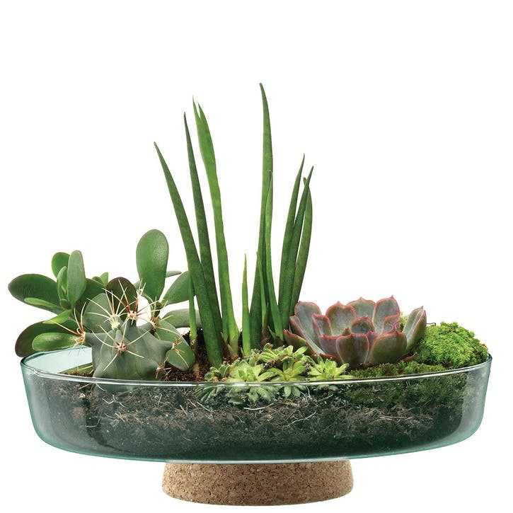 Canopy, Planting Bowl