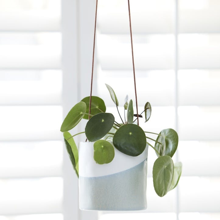 Indoor Hanging Pot, Dip Design