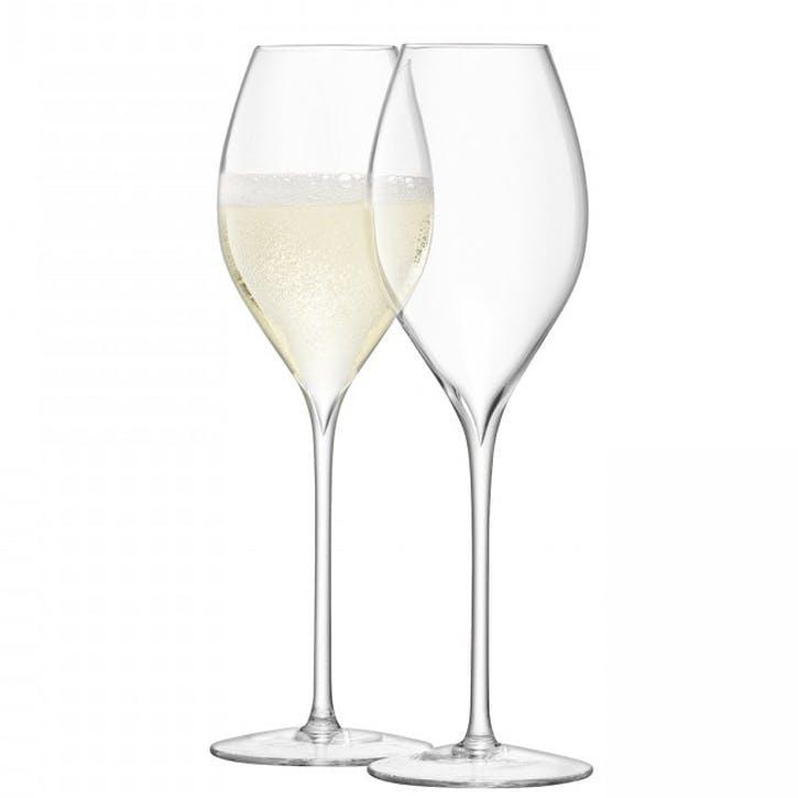Tulip Set of 2 Champagne Glasses